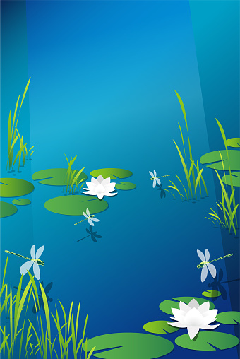 Dragonfly Lilies