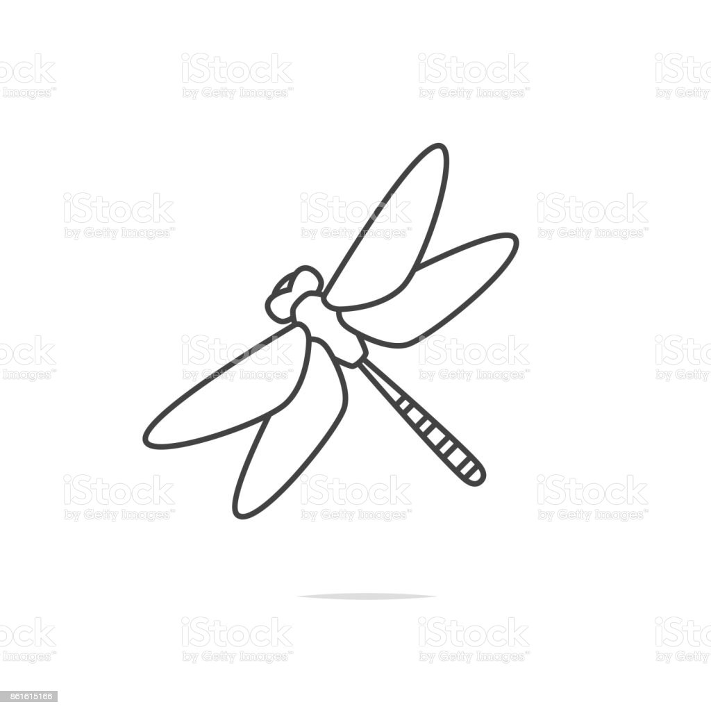 Dragonfly line icon vector vector art illustration