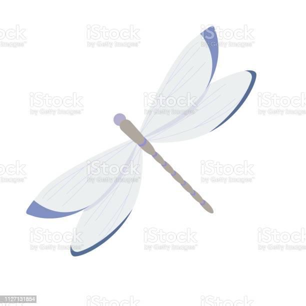 Dragonfly on white background for graphic and web design modern vector id1127131854?b=1&k=6&m=1127131854&s=612x612&h=t6cplfx59npr8s2ov4wgdyahdb6qbghgfaqo gnnqbw=