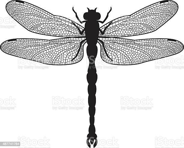 Dragonfly silhouette vector id487741764?b=1&k=6&m=487741764&s=612x612&h=y39r7 tmxtzmolxu7pp0mbbpkkf7pzlsdmgkag1nqvs=