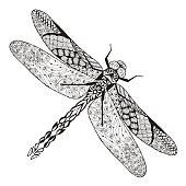 Dragonfly. Sketch for tattoo or t-shirt