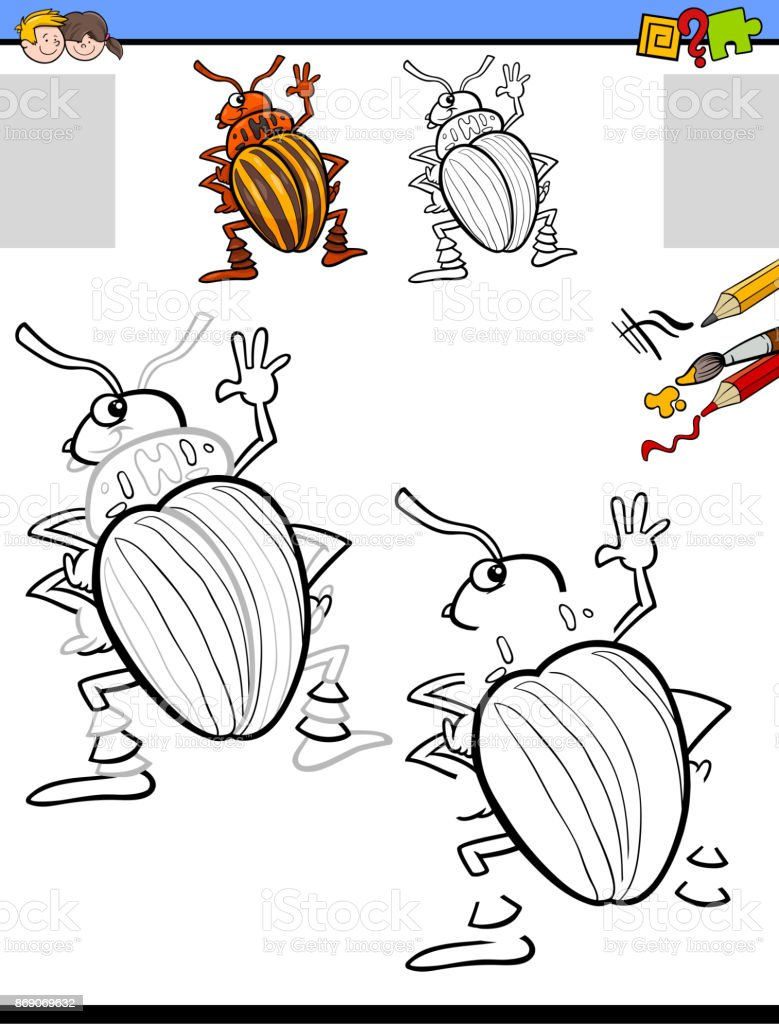 drawing and coloring activity with potato beetle vector art illustration