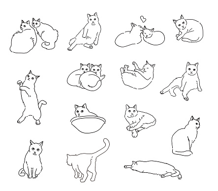 drawing art product of a cat