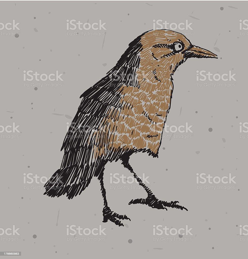 Drawing bird royalty-free stock vector art