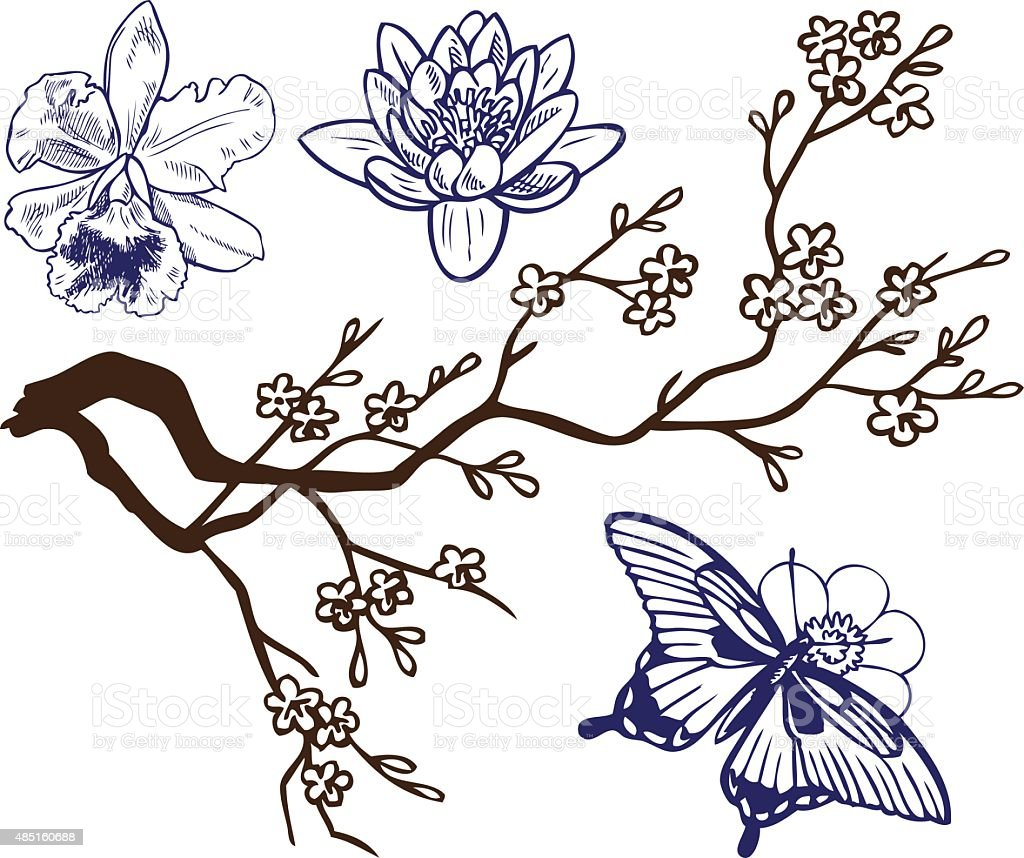 drawing branch with flowers and butterflies stock vector art