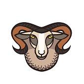 Drawing head of ram