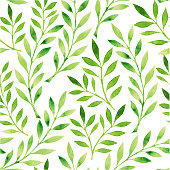 A drawing of a pattern of green leaves on a white background