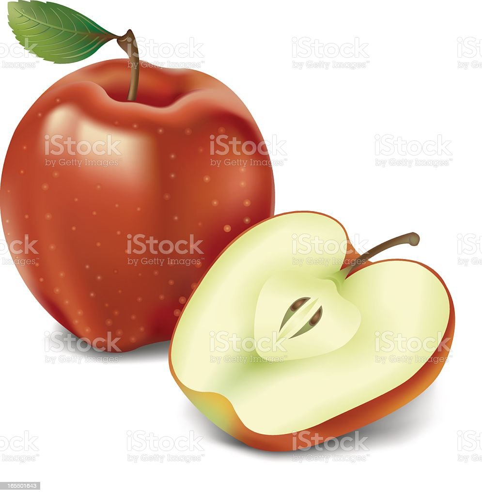 Drawing of a red apple with stem and leaf, and half an apple royalty-free stock vector art
