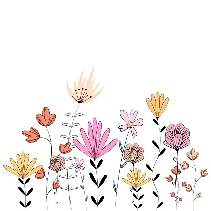 Drawing of a variety of wildflowers. Flower vector