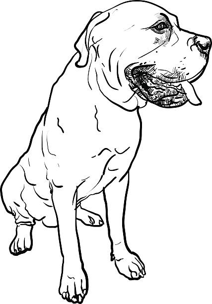 Royalty Free English Mastiff Clip Art, Vector Images ...