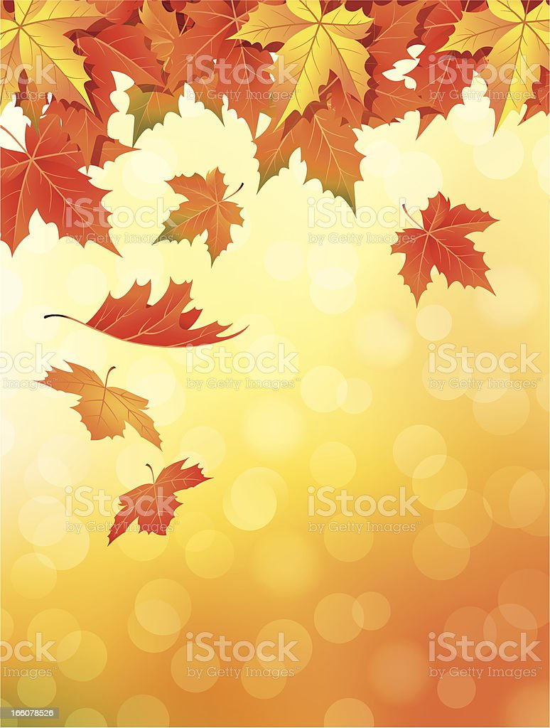 Drawing of orange to red leaves falling in autumn vector art illustration