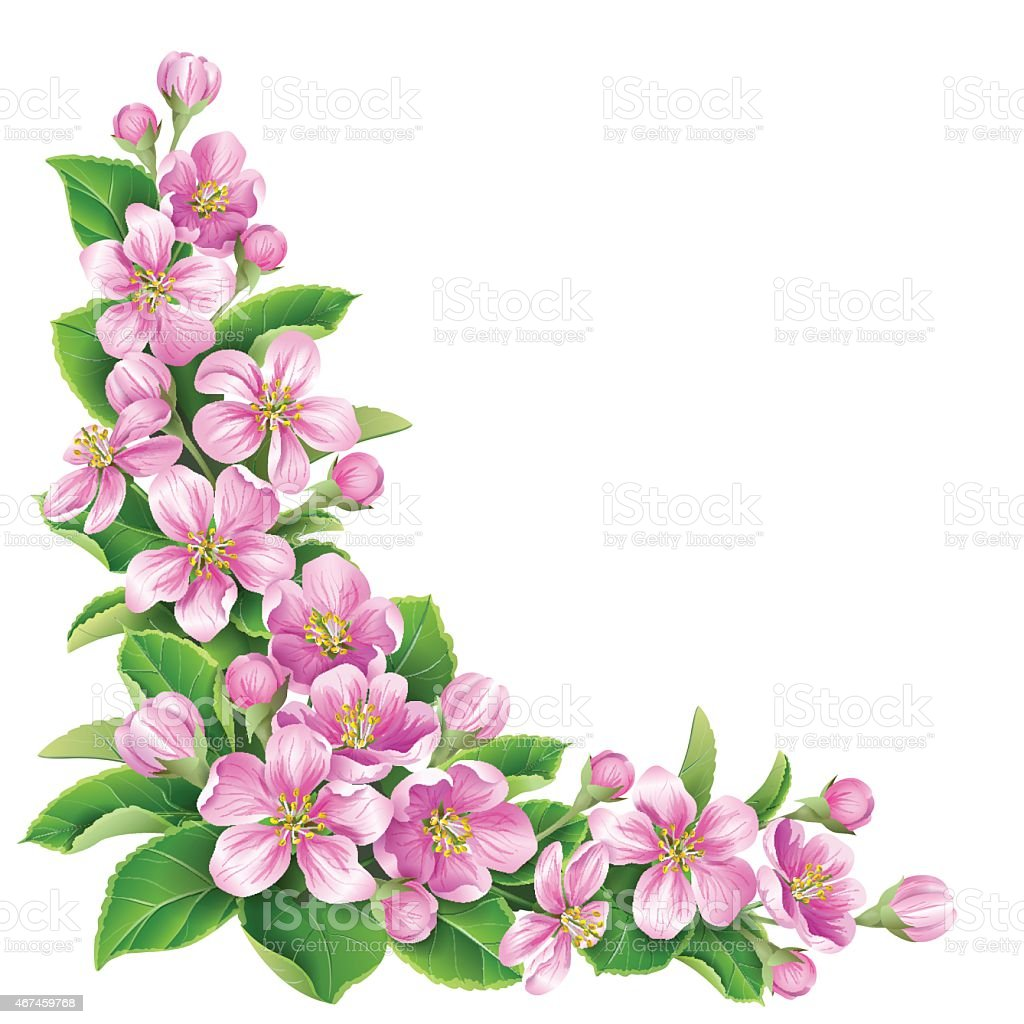 Drawing of pink flowers and green leaves on white background stock drawing of pink flowers and green leaves on white background royalty free drawing of pink mightylinksfo Images