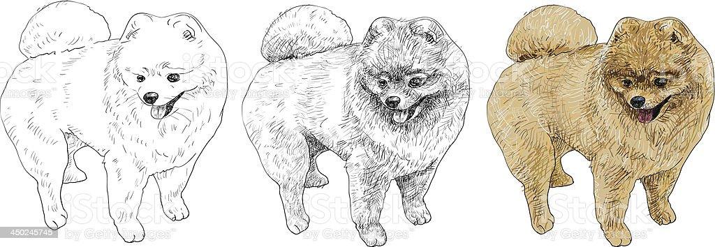disegni da colorare di cani volpini