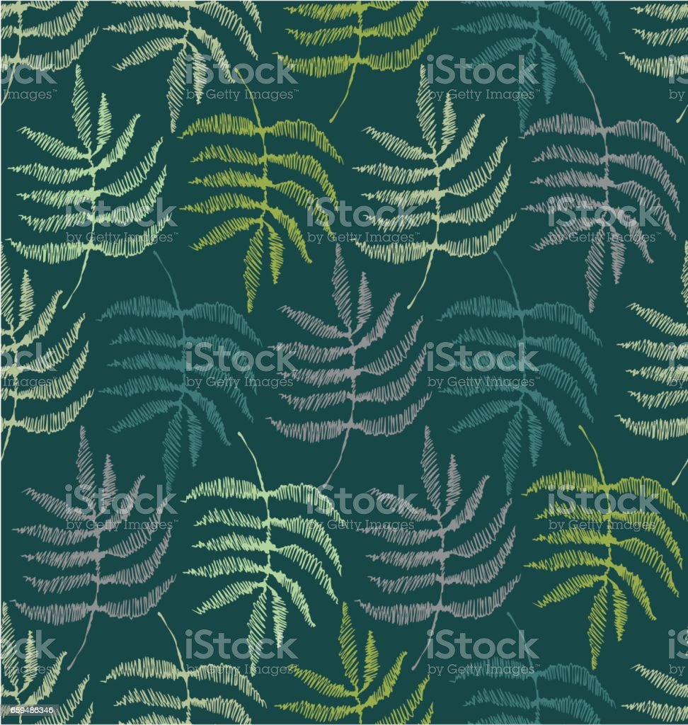 Drawing of the leaves of the fern vector art illustration