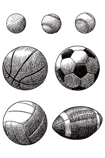 Drawing of various sport balls