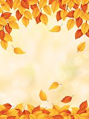 Autumn background with leaves falling.