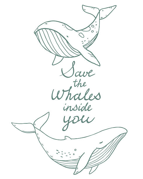 Drawing sea life whales vector art illustration