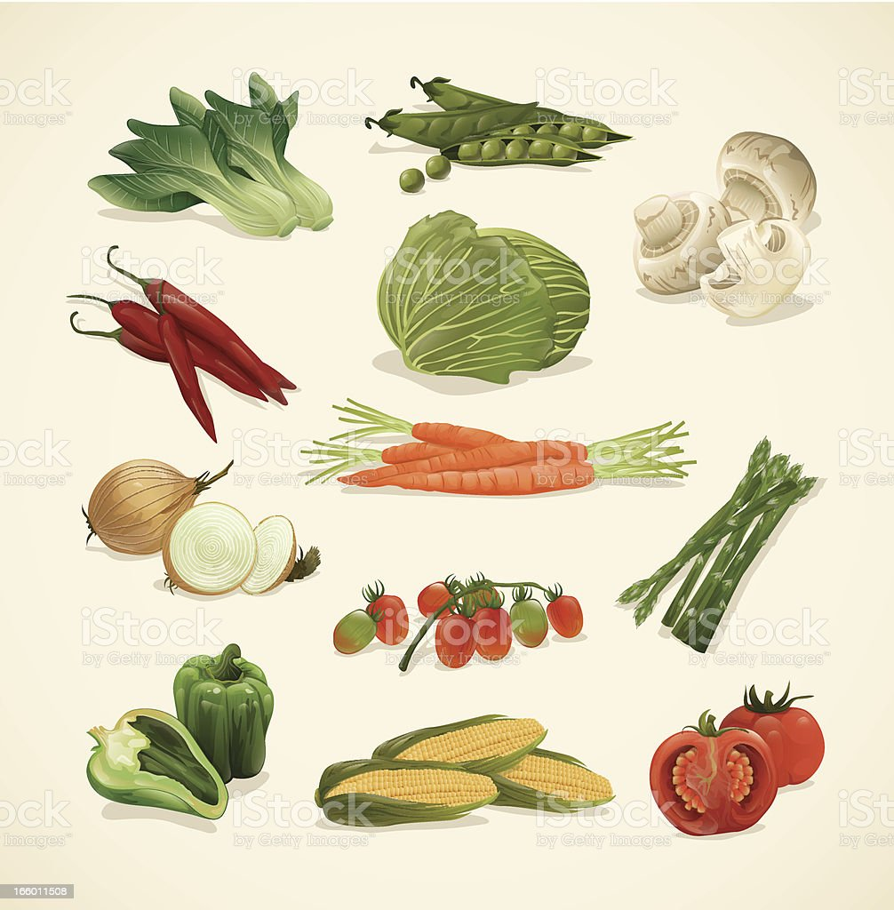 Drawing set of assorted healthy vegetable icons vector art illustration