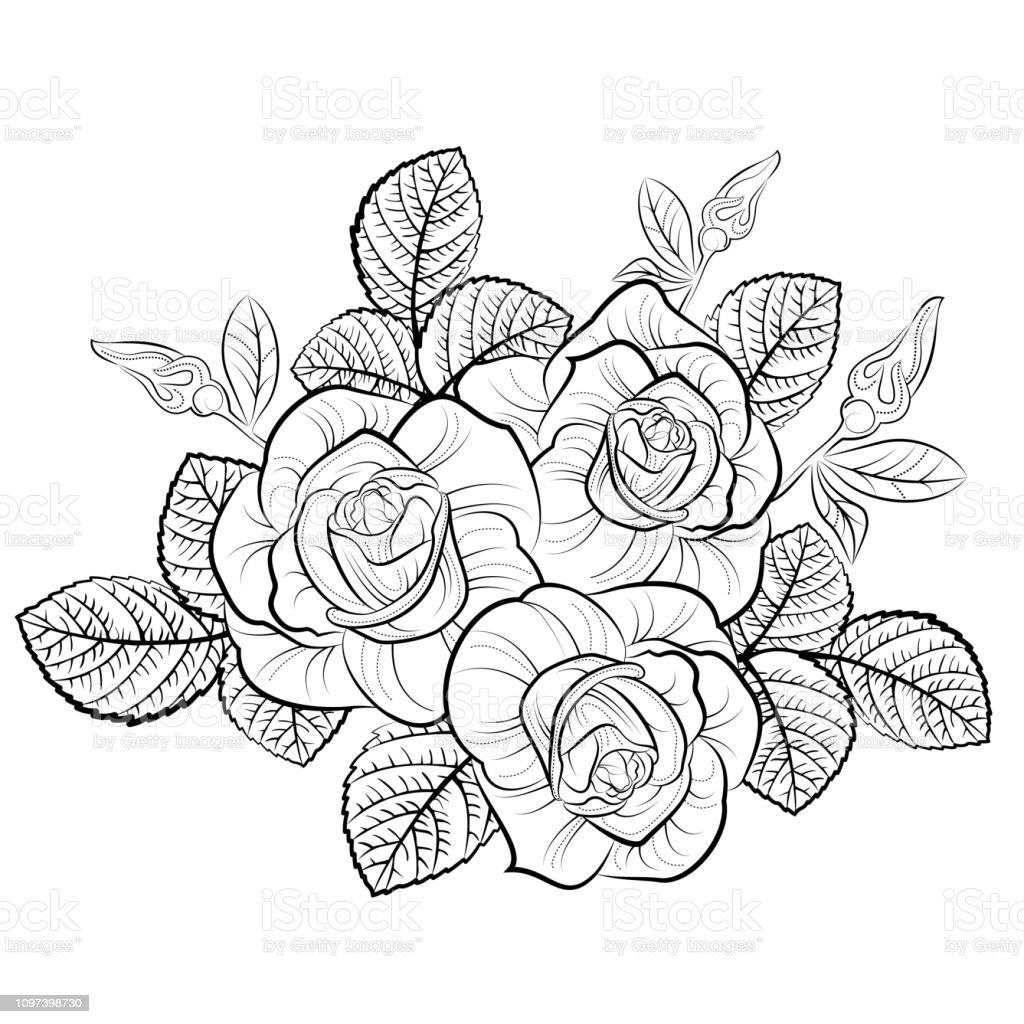 Bouquet De Rose Dessin