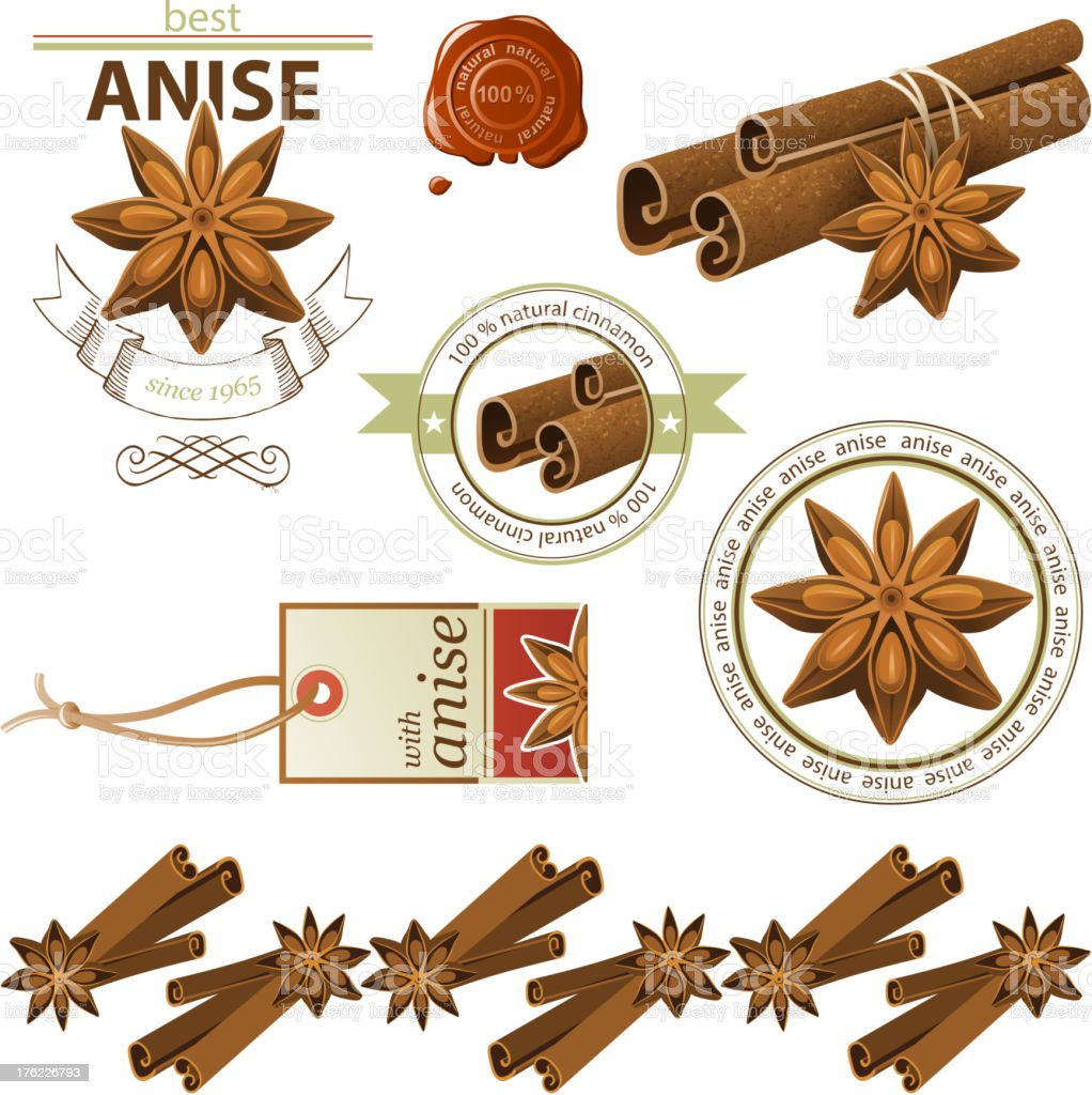 Drawings of anise and cinnamon indifferent pictures vector art illustration