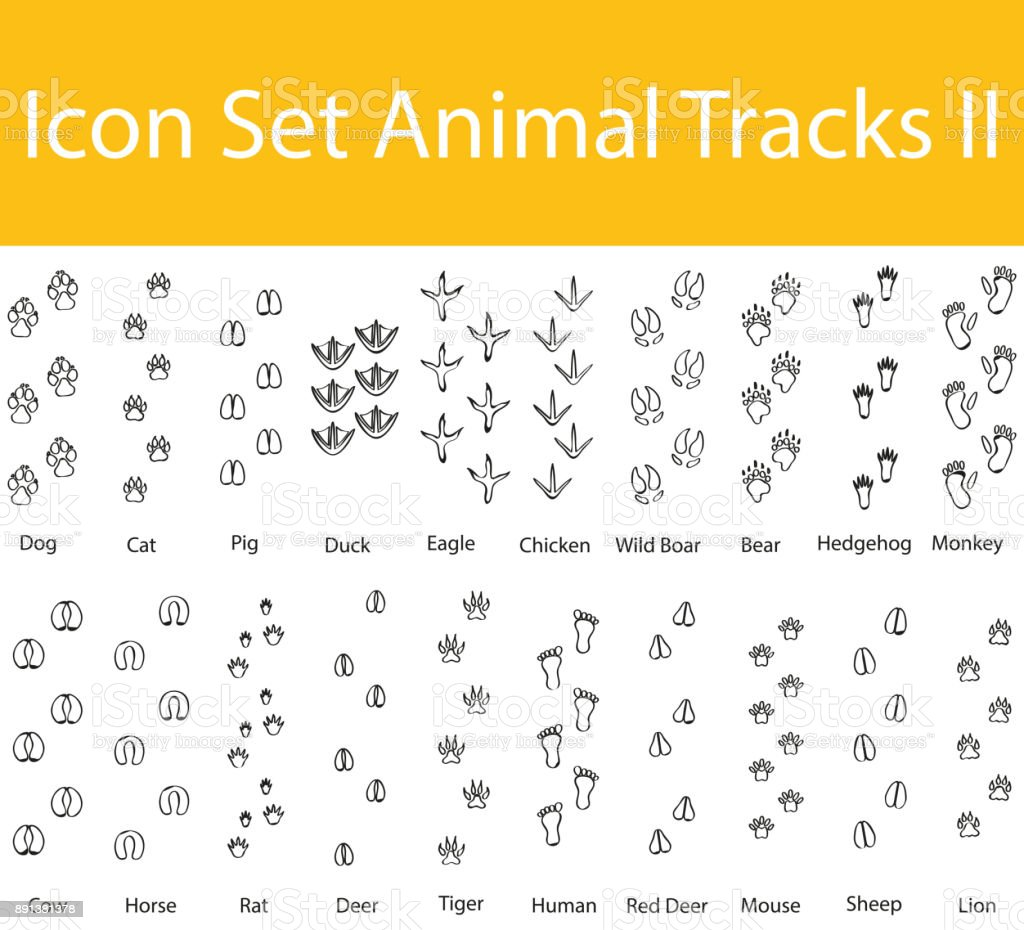 Drawn Doodle Lined Icon Set Animal Tracks II vector art illustration