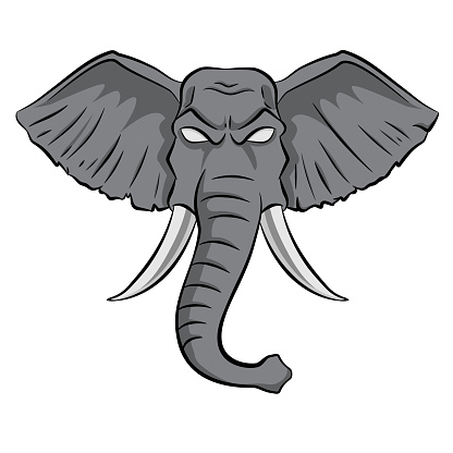 drawn head of an elephant. vectorial. stock illustration isolated on white background