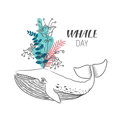 Drawn whale with flowers and leafs. Vector illustration in line art style.