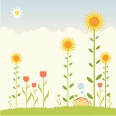 The dream of a blooming garden of sunflowers and tulips in your backyard. How sweet!