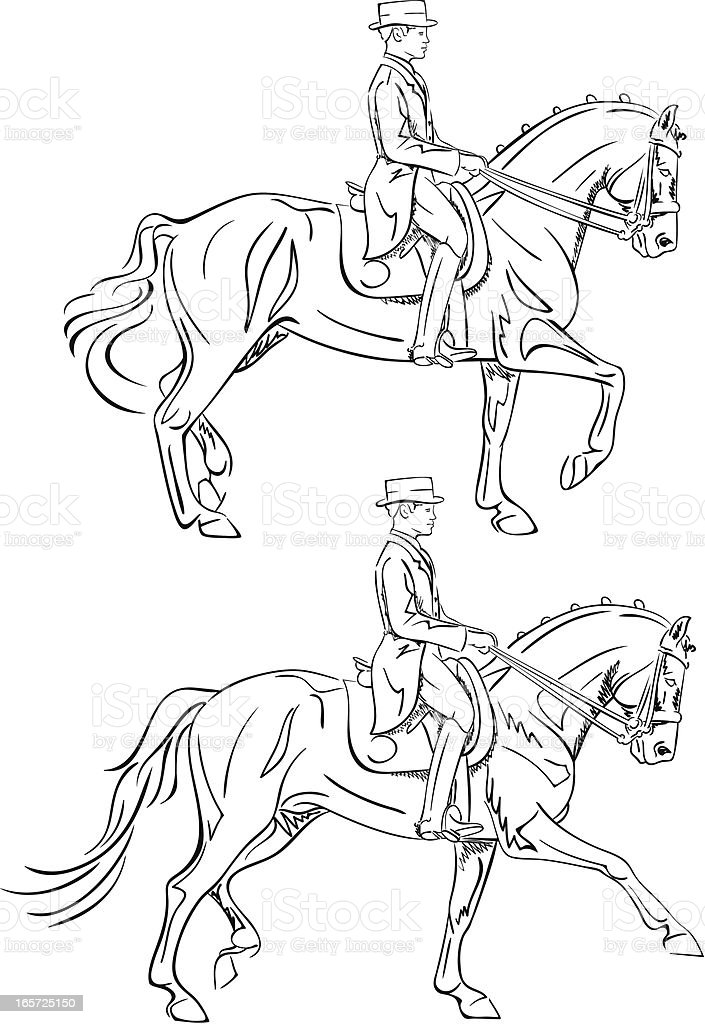 Dressage Rider Line Art Drawing Stock Illustration Download Image Now Istock