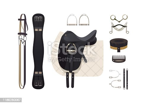 Dressage riding tack, horse grooming tools, riding gear and accessories