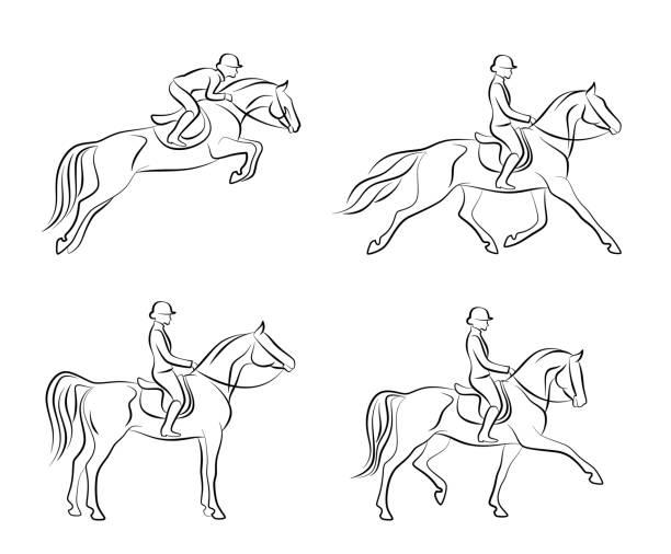 Dressage set vector art illustration