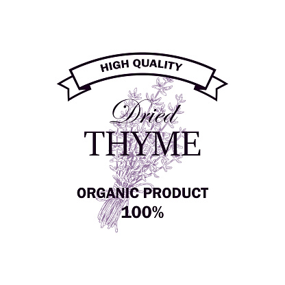 Dried thyme logo with hand drawn elements. Vector illustration in sketch style isolated on white background