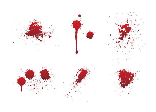 ilustraciones, imágenes clip art, dibujos animados e iconos de stock de goteos de sangre o pintura roja conjunto aislado en fondo blanco. - sangre