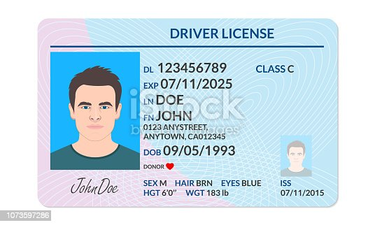 istock Driver license with male photo. Identification or ID card template. Vector illustration. 1073597286