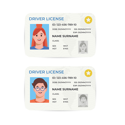 Drivers License. A plastic identity card. Vector flat illustration of the template.