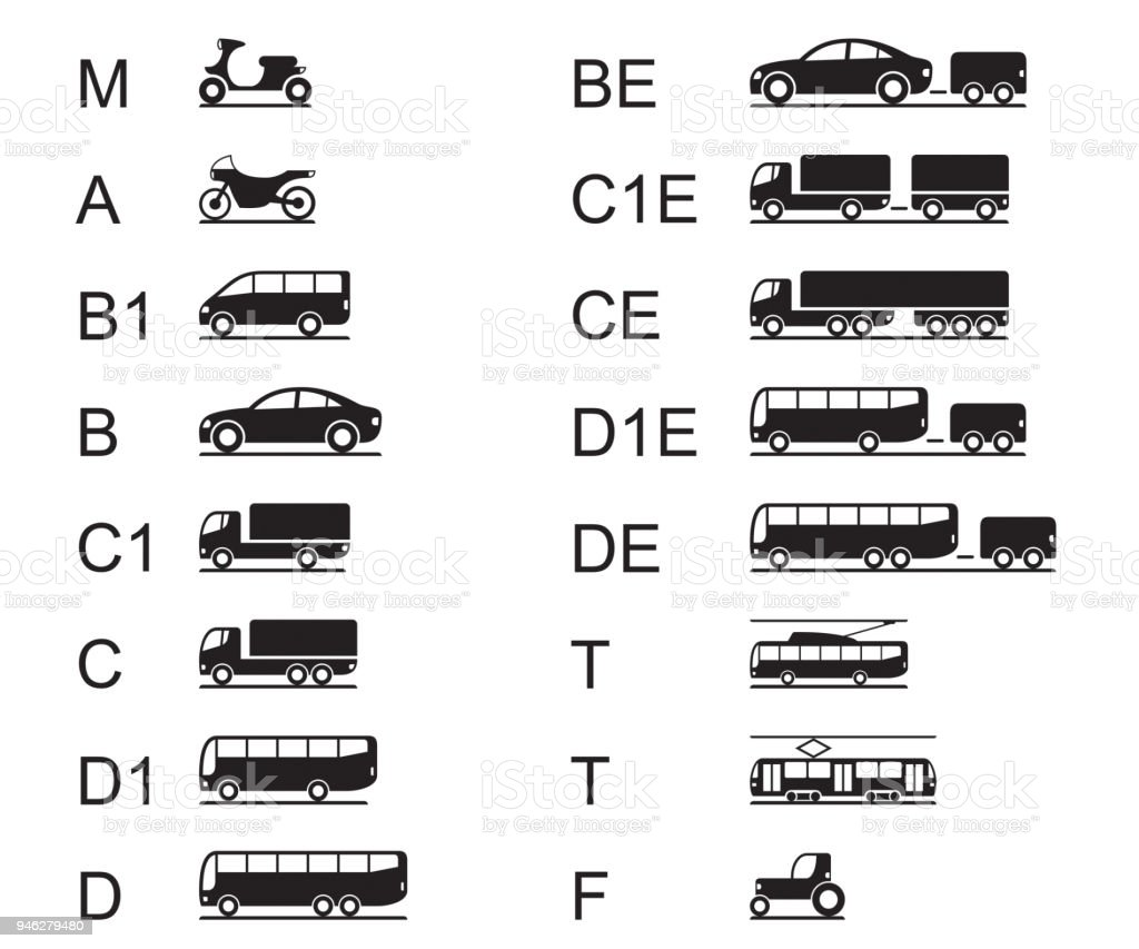 Driving licences for different road vehicles vector art illustration