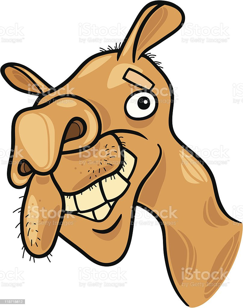 dromedary camel royalty-free stock vector art