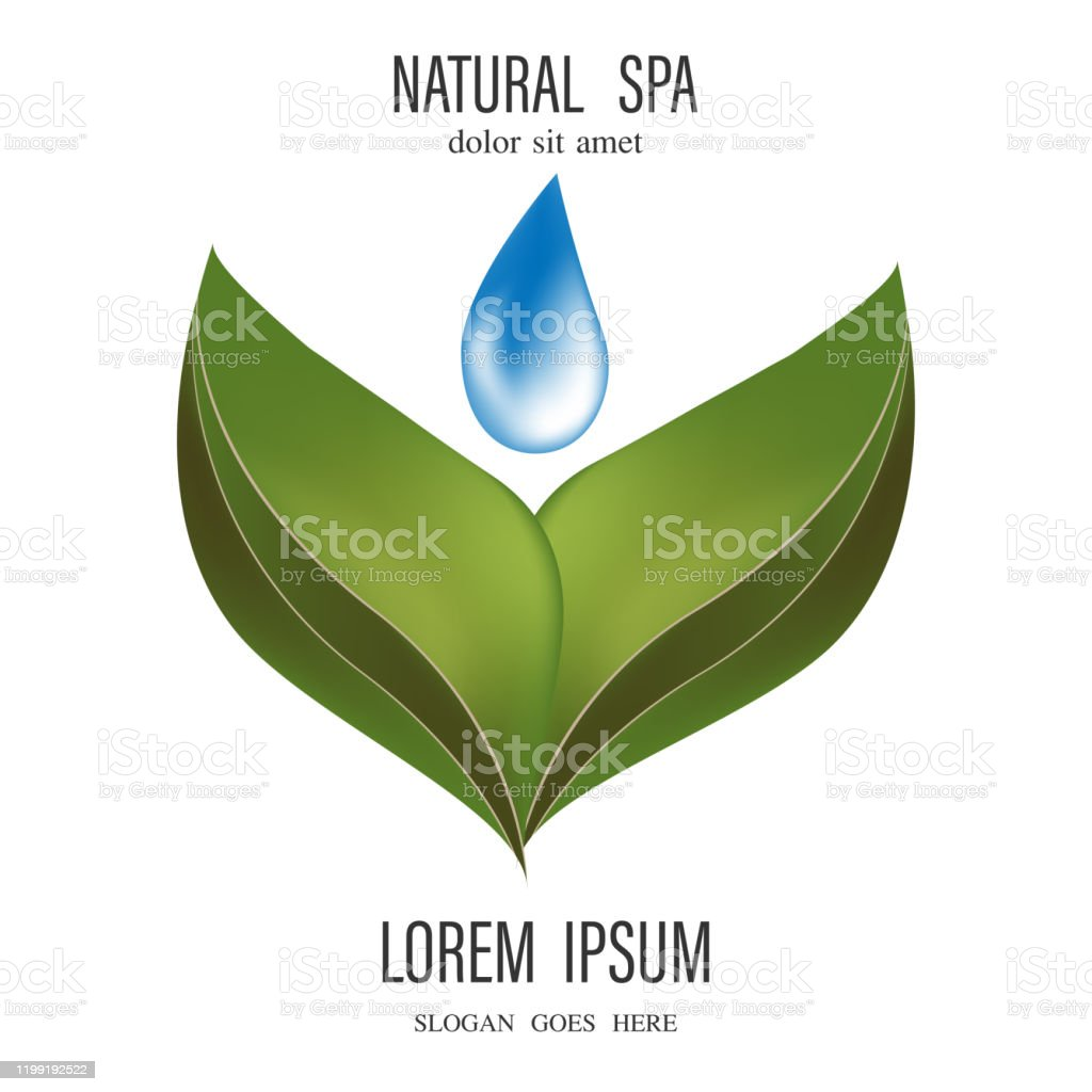 Drop With Leaves Logo Aromatherapy Logoikon With A Drop Of Leaf Essential Oil Aromatherapy Perfumes Cosmetics Spa Logo Stock Illustration Download Image Now Istock