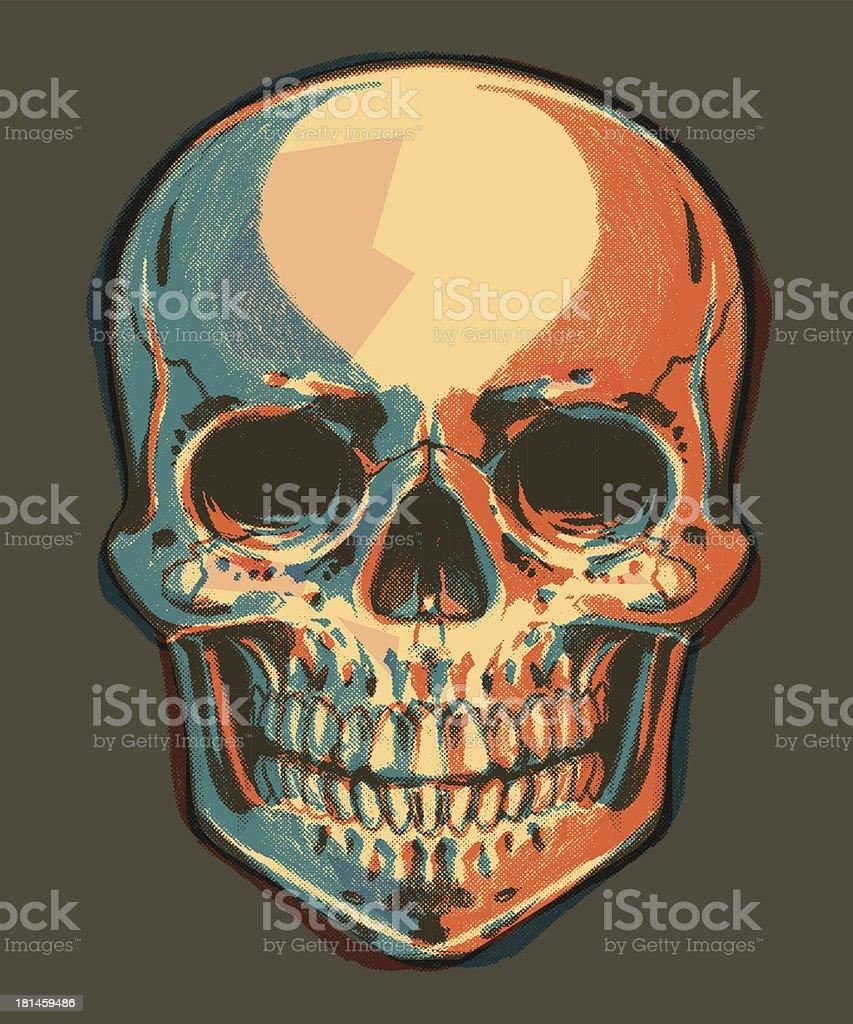 Drskull The Skeleton Head Stock Vector Art More Images Of Blue