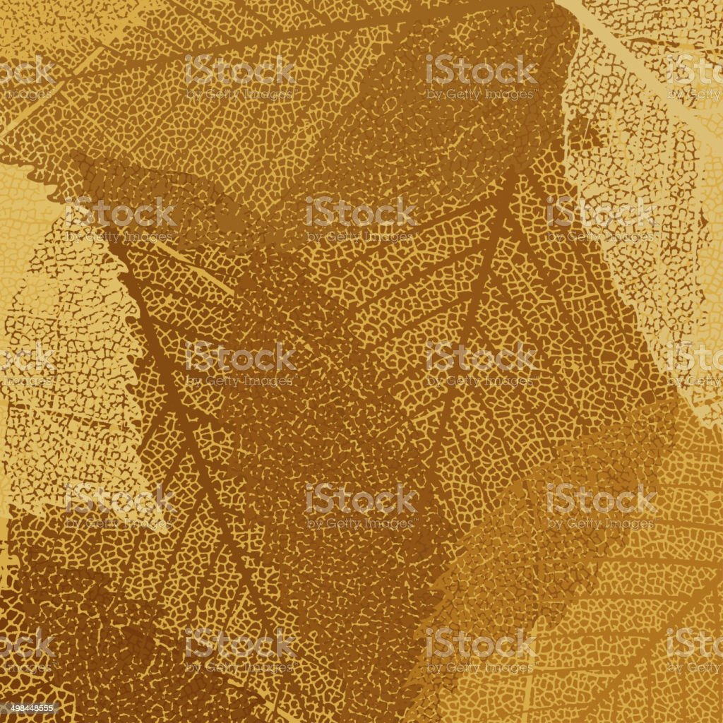 Dry autumn leaves template. EPS 8 vector art illustration
