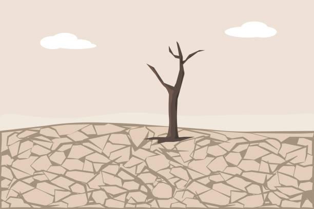ilustrações de stock, clip art, desenhos animados e ícones de dry cracked land. soil erosion and desertification - alter do chão