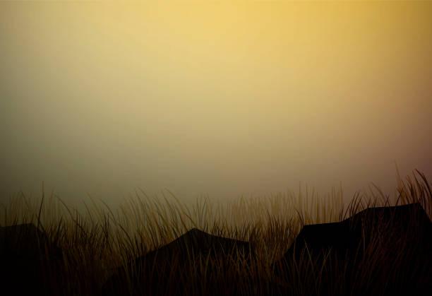 trockenen bereich rasen mit steinen, prärielandschaften dürre, trockene geiler abend savannenlandschaft, vektor - afrikanische steppe dürre stock-grafiken, -clipart, -cartoons und -symbole