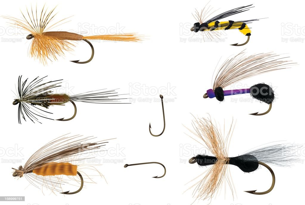 Dry flies on and with fishing hooks vector art illustration