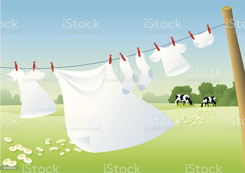 Drying the white laundry vector art illustration