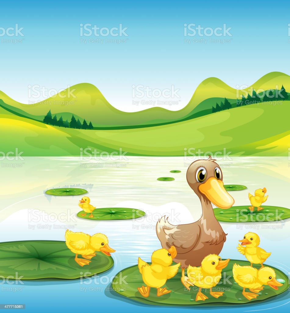 duck and her ducklings at the pond royalty-free stock vector art