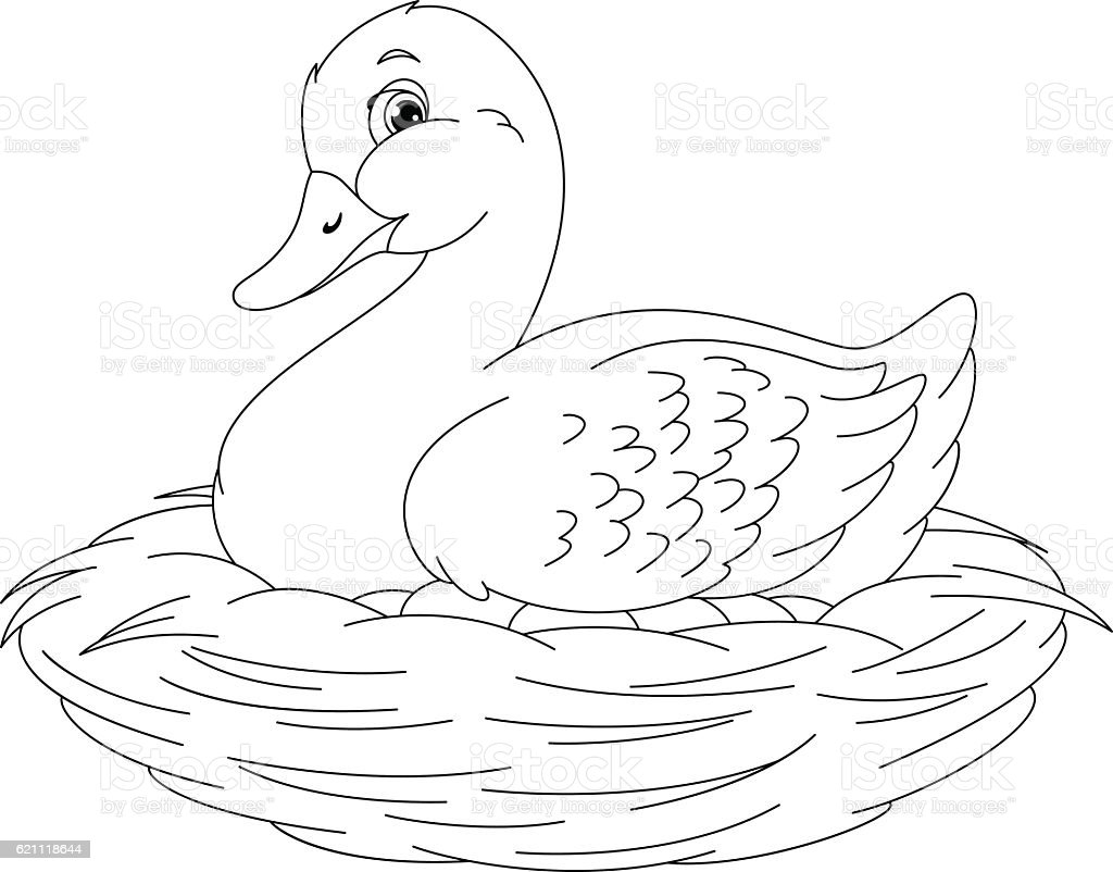 Duck Coloring Page Stock Vector Art & More Images of Animal ...