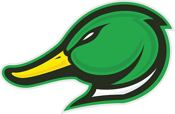 Ente Kopf Maskottchen – Vektorgrafik