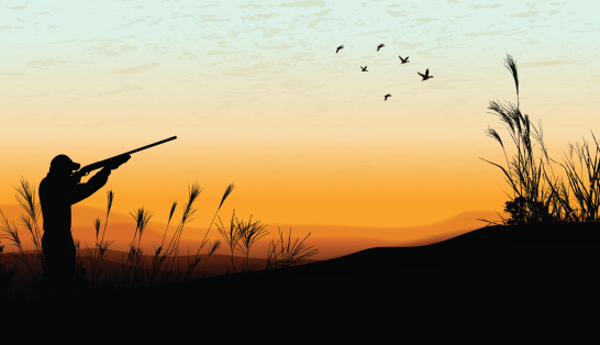 Duck Hunting Background - Hunter
