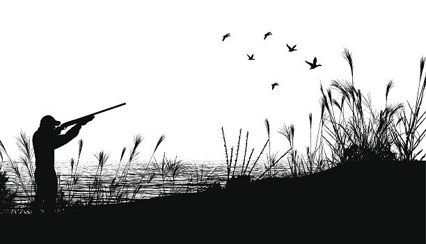 """Duck Hunting Background Graphic silhouette background illustration of a Duck Hunter. Check out my """"Flaming Sports Balls and More"""" light box. bird hunting stock illustrations"""
