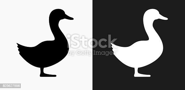 Duck Icon on Black and White Vector Backgrounds. This vector illustration includes two variations of the icon one in black on a light background on the left and another version in white on a dark background positioned on the right. The vector icon is simple yet elegant and can be used in a variety of ways including website or mobile application icon. This royalty free image is 100% vector based and all design elements can be scaled to any size.